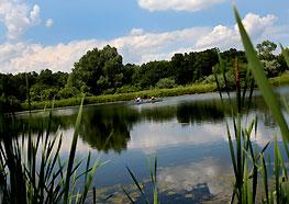Hanley Biological Field Preserve