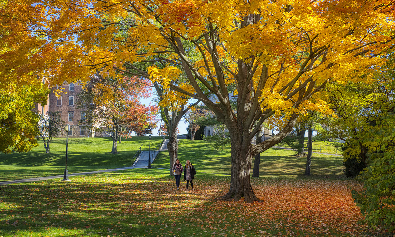 Campus Fall-00284