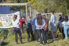 Day of Service Fall 189 copy
