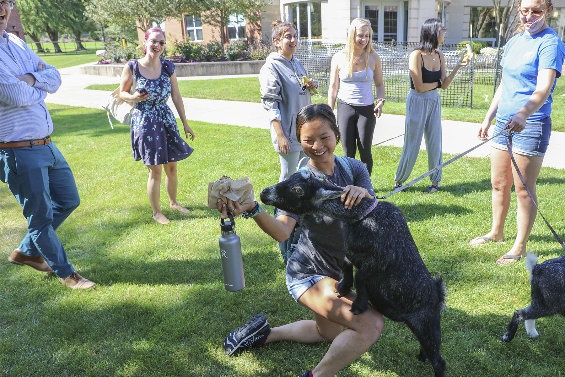 Goats on Campus-00218