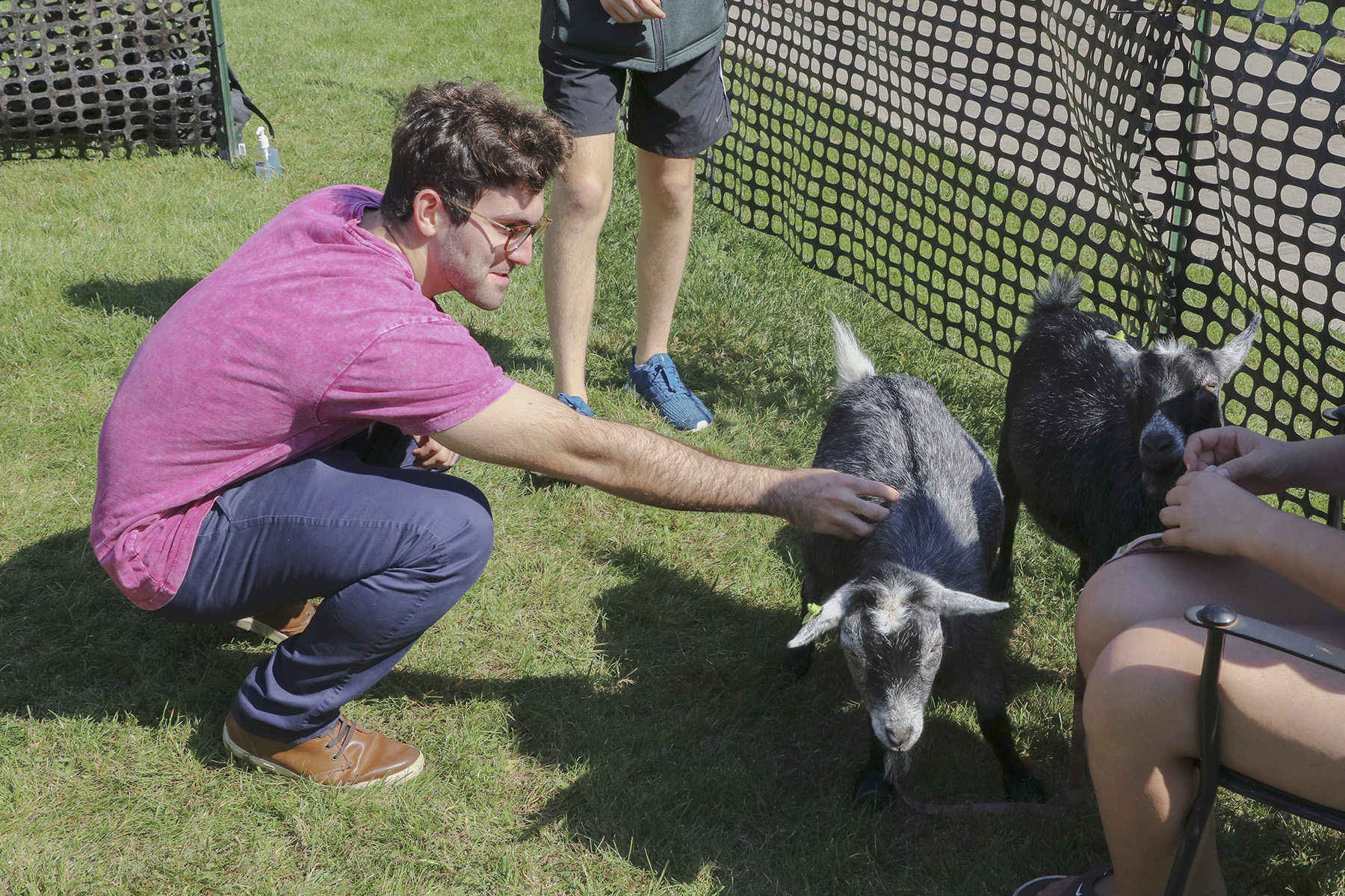 Goats on Campus-00393