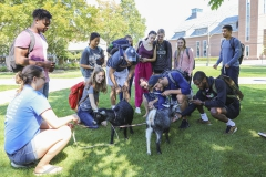 Goats on Campus-00174