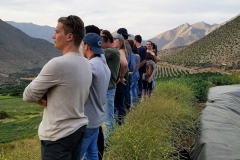 Students on the HWS Chile abroad program look out over the Andes Mountains during a visit to Hacienda el Bosque Ranch.