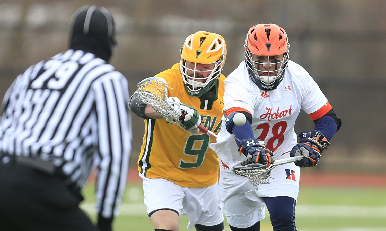 Matthew Pedicine '19 corrals a loose ball during Hobart's 11-12 loss to Siena College.