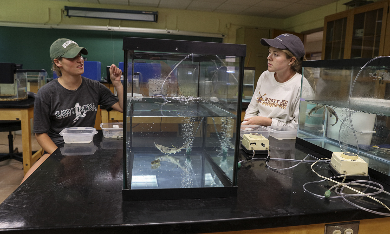 Kate Foley '20 and McKenzie Frazier '20 discuss findings on feeding trials with Round Goby and Lake Sturgeon as part of summer research conducted alongside Director of Introductory Biology Laboratories Susan Flanders Cushman '98.