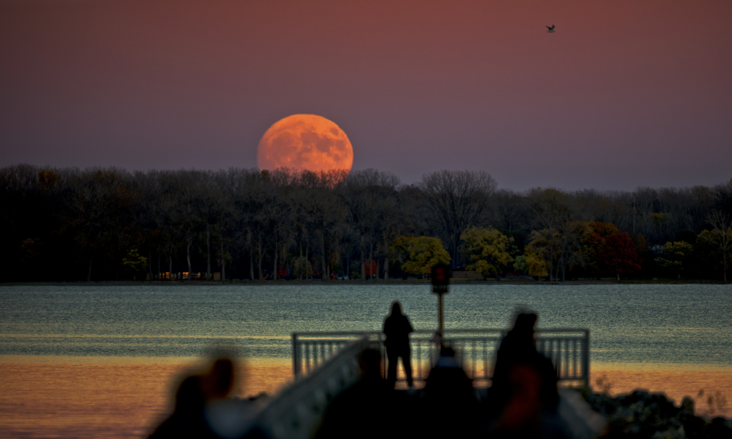 The supermoon rises over Seneca Lake.