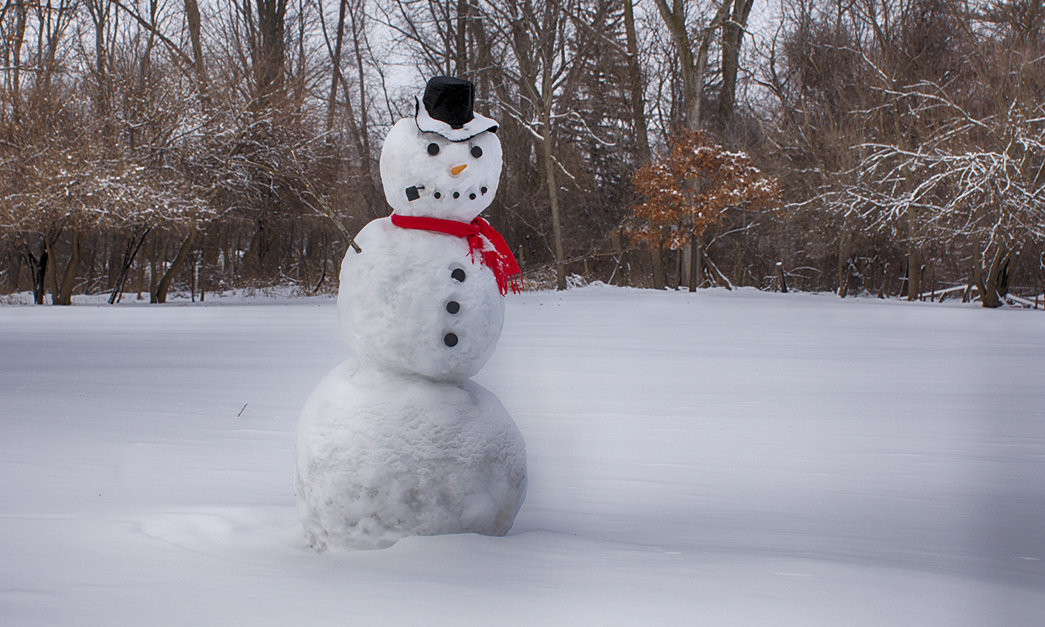 Complete with hat, scarf and pipe, a snowman grins in a field along routes 5 and 20 near campus.