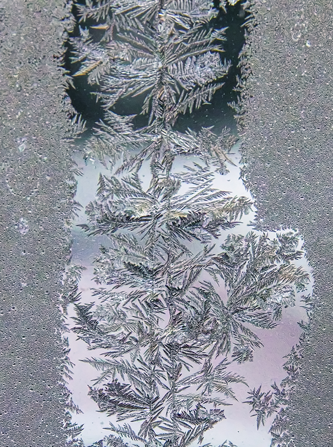A closeup of ice crystals forming on a windowpane at the downtown HWS offices.