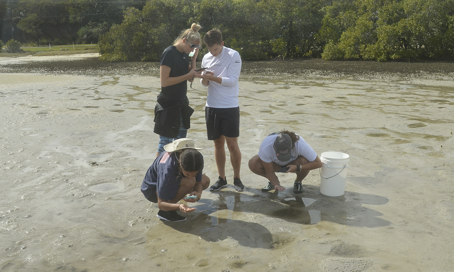 Students studying abroad in Australia with Associate Professor of Environmental Studies Darrin Magee and Professor of Biology Mark Deutschlander collect samples from tide pools.