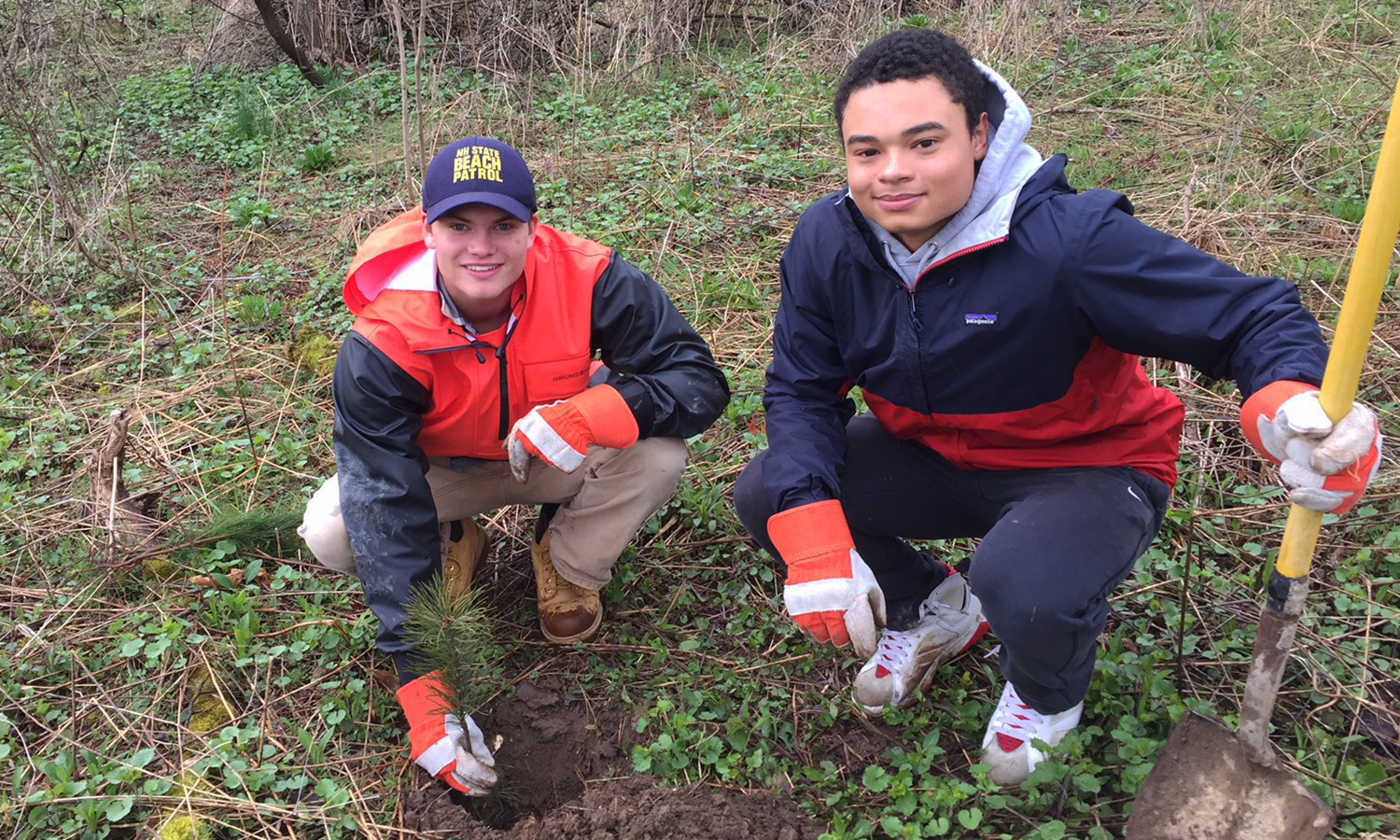 Hans Morris and Michael DeVaney planting white pines.