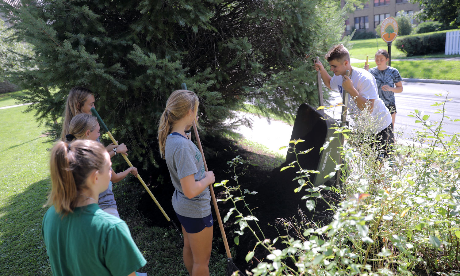 First-year students enhance the garden landscape at Jefferson Park during the 2018 Day of Service.