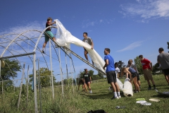 First-year students weatherize the greenhouses at Fribolin Farm as part of Orientation weekend's Day of Service.