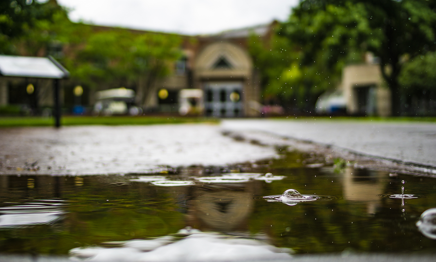 On a rainy day, puddles form on the path to the Scandling Campus Center.