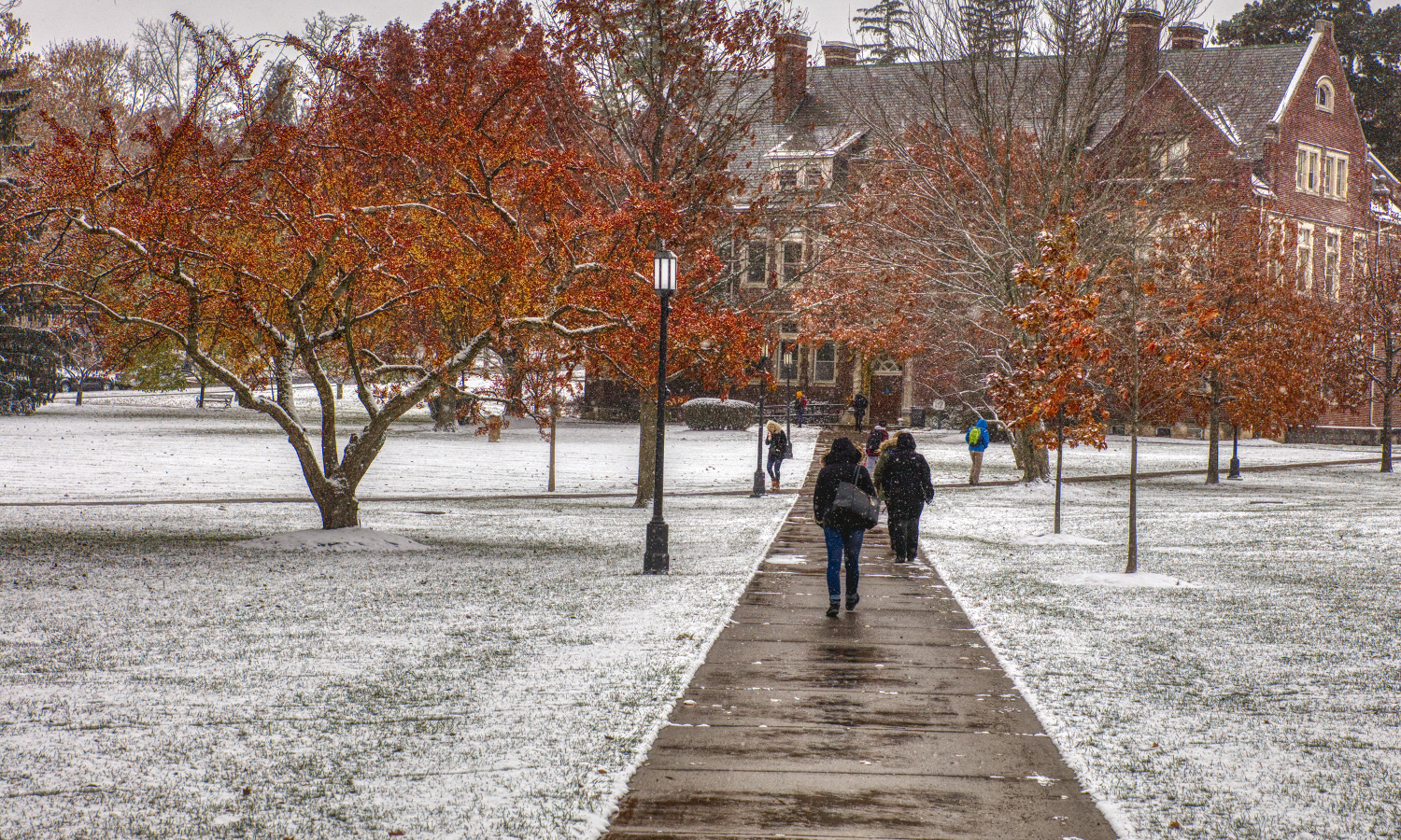 Fall foliage hangs on during the first snow fall of the semester.