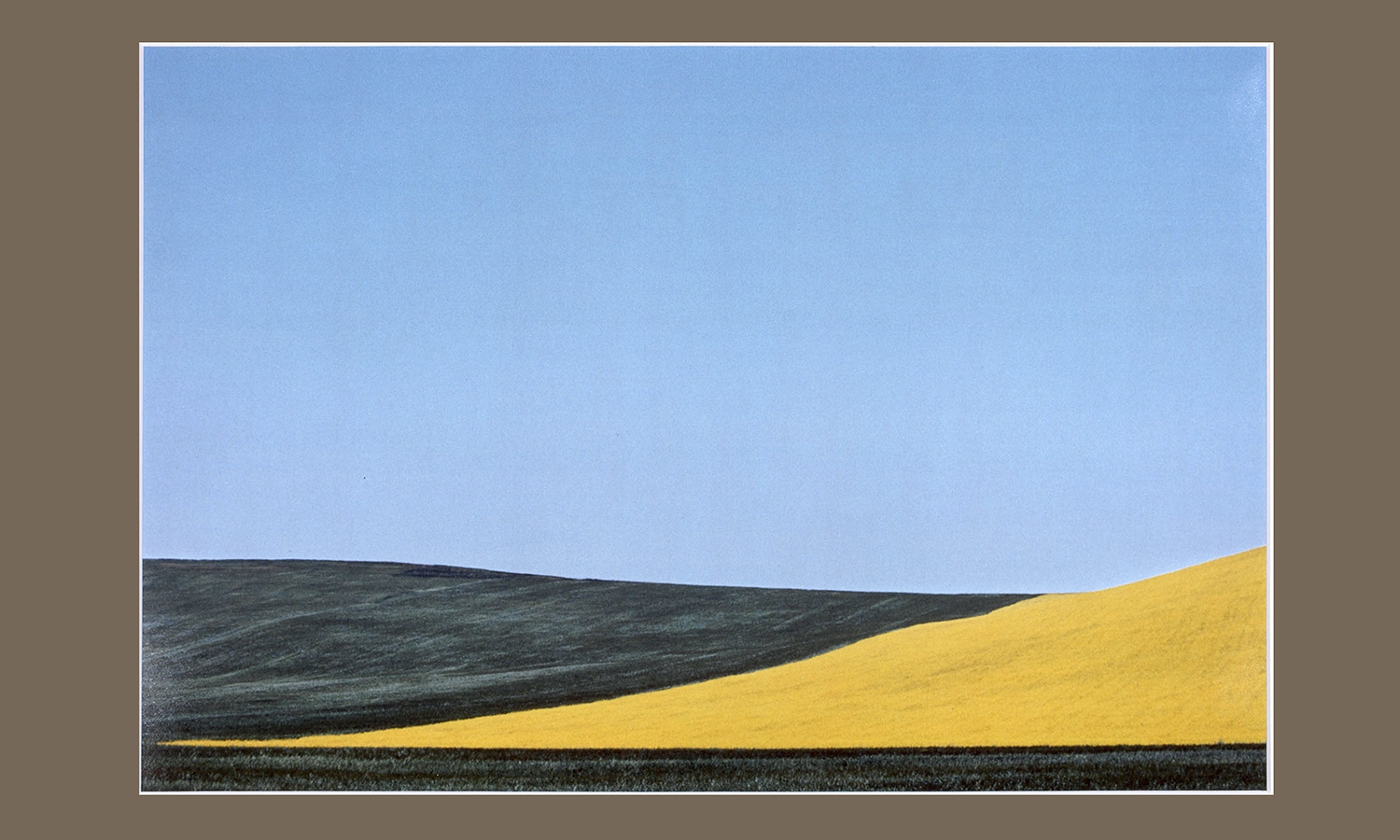 Franco Fontana (b.1933, Italy) Paesaggio,Lucanio II. 1973. Color Nature Landscapes II.Cibachrome, 51 x 61 cm. Gift of Mr. and Mrs.Chester J. Straub p'87 (Christopher Straub)