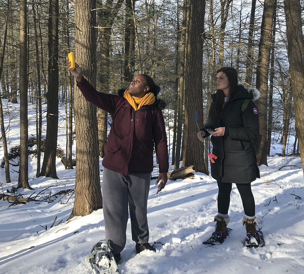 At the VanRiper Preserve of the Finger Lakes Land Trust, Nanya Okeke '19 and Meredith Fennell '20 study Hemlock Wooly Adeldig, an insect pest damaging Hemlock trees in the Northeast. The students are working with Associate Professor of Biology Meghan Brown.