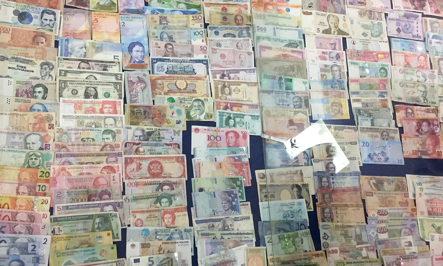 World currency brought by tourists is on display at the Latin American School of Medicine