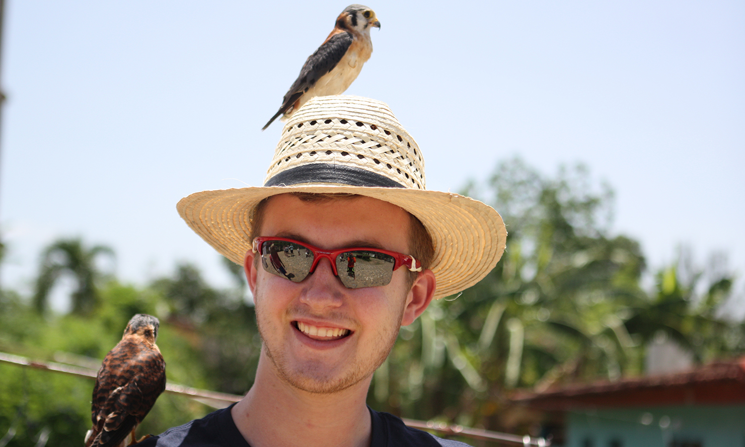 Grant Emerson '20 courageously hides his fear with a smile, as two 'domesticated' kestrels are thrown onto him by locals looking to make some money in Ciénaga de Zapata.