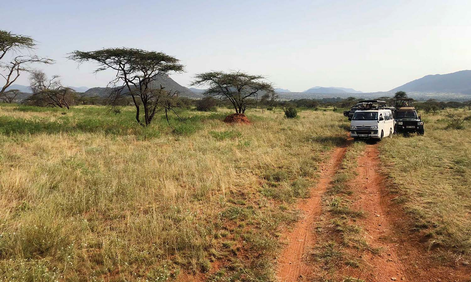 Safari vans stop at a scenic overlook in Samburu National Reserve.