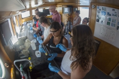 Summer Academy students conduct research on the William Scandling research vessel.