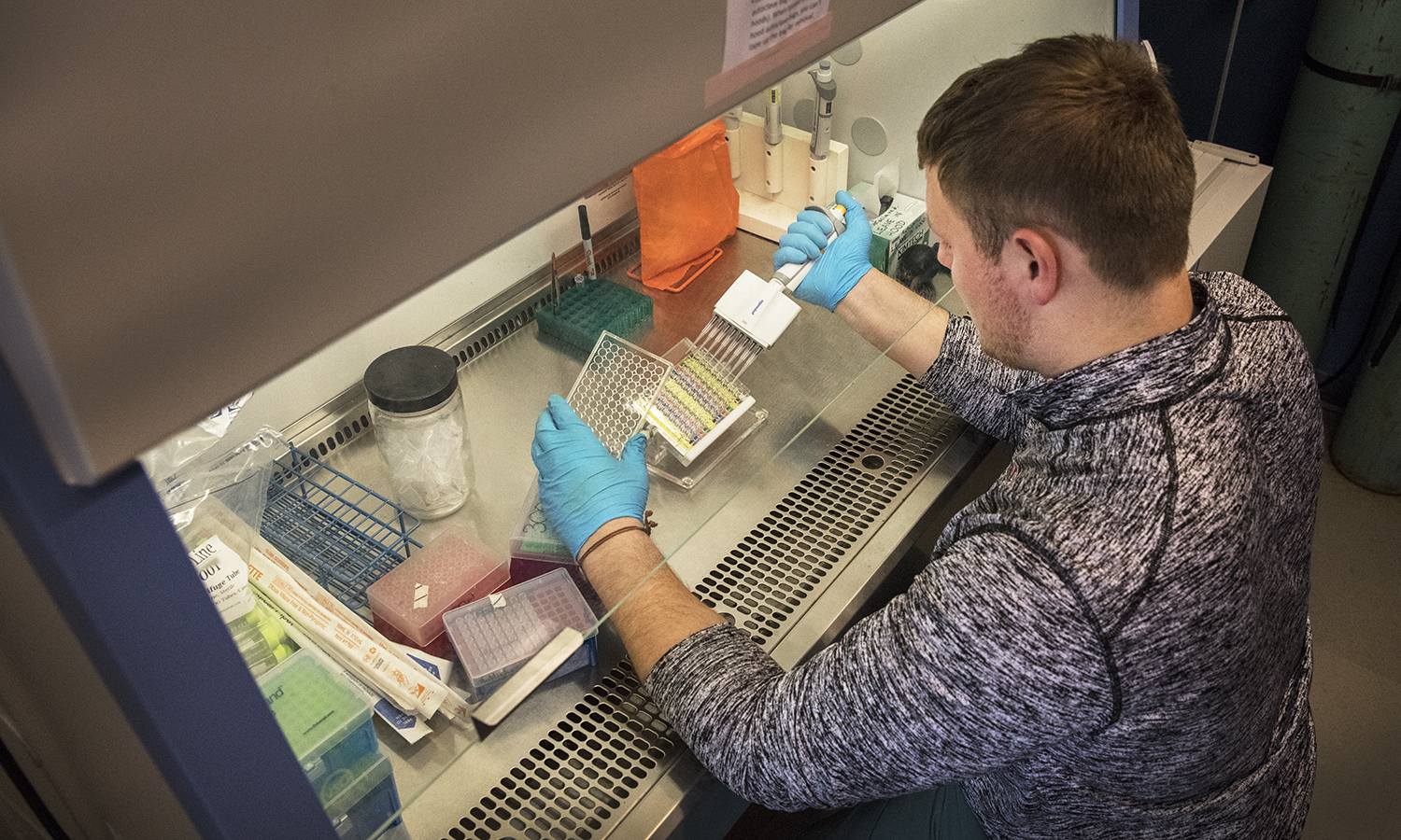 Andrew Herrmann '19 tests small molecules in order target a key component in cancer cell growth. The molecules were synthesized by fellow students in Professor of Chemistry Erin Pelkey's lab.