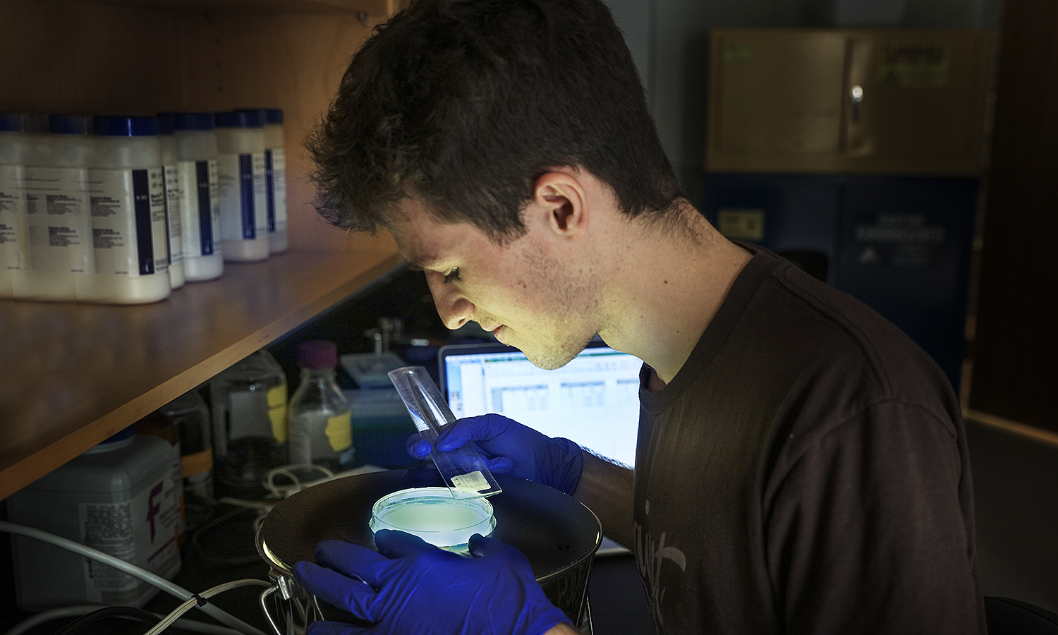 Mowery Patricia Summer Lab Students KColtonMatt McNulty '22. Studying proteins that drive bacterial motility.