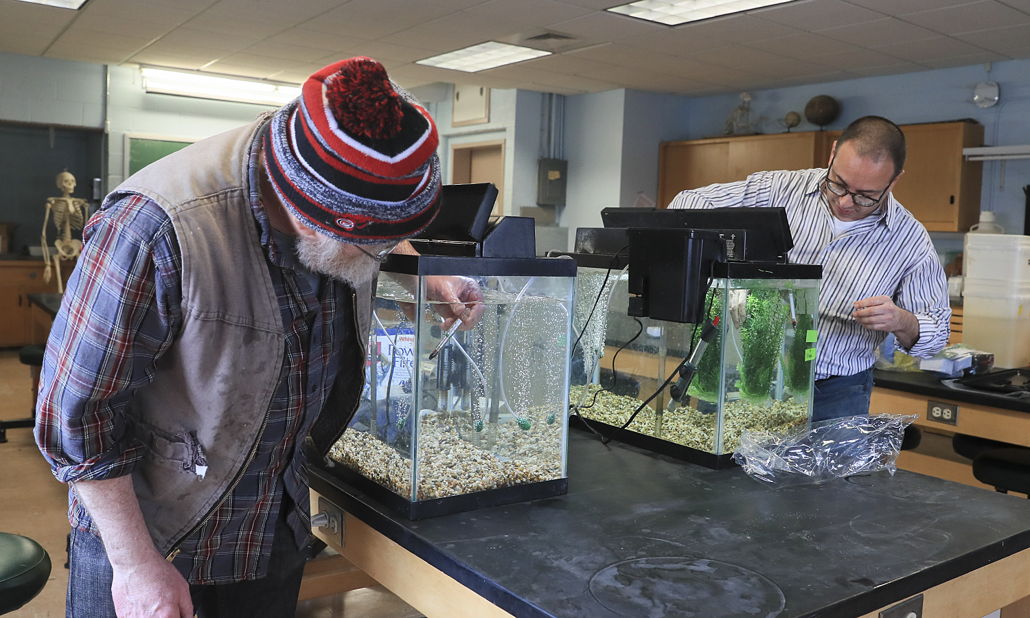 """Animal and Plant Technician Jim Norwalk and Visiting Assistant Professor of Biology David Holtzman set up fish tanks as part of a """"Vertebrate Biology"""" lab examining schooling behavior in swordtails and platyfish to demonstrate preferences based on school size and their ability to quantify differences in school size."""
