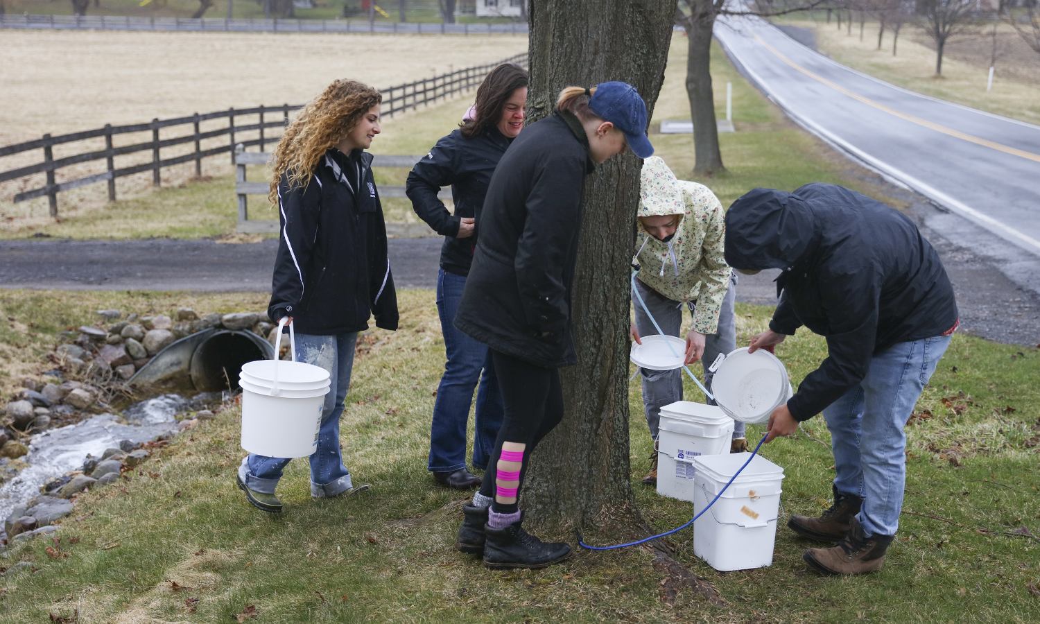 Food Systems Program Manager and Fribolin Farm Intern Hannah Wood '18 lead a session on tapping maple trees for maple syrup with student volunteers at the HWS Fribolin Farm.