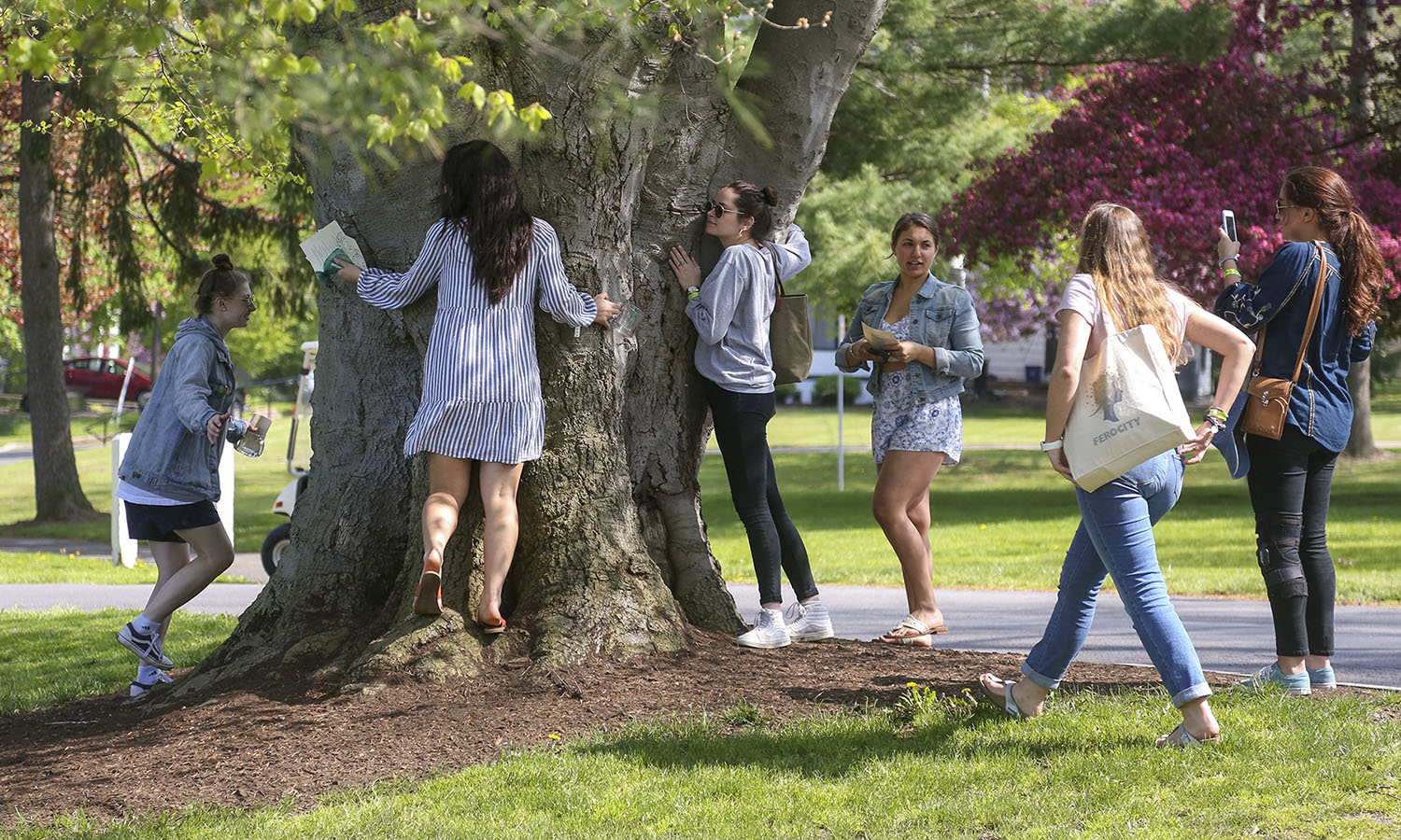 "William Smith seniors touch the ""good luck tree,"" a tradition that dates back to the Collegeís founding, in which William Smith women would touch a special tree on The Hill for good luck."