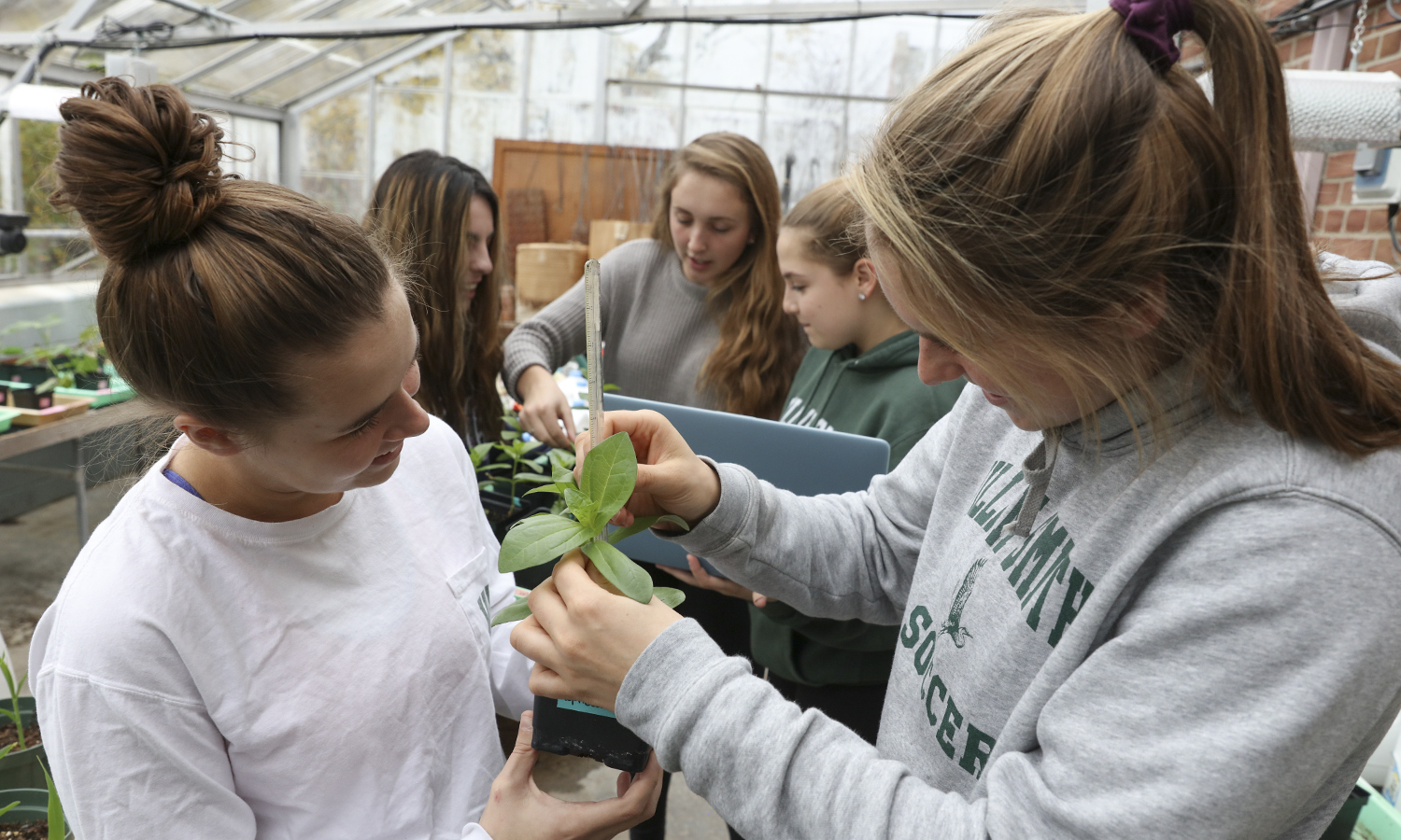 X and X examine an X in the HWS Greenhouse.