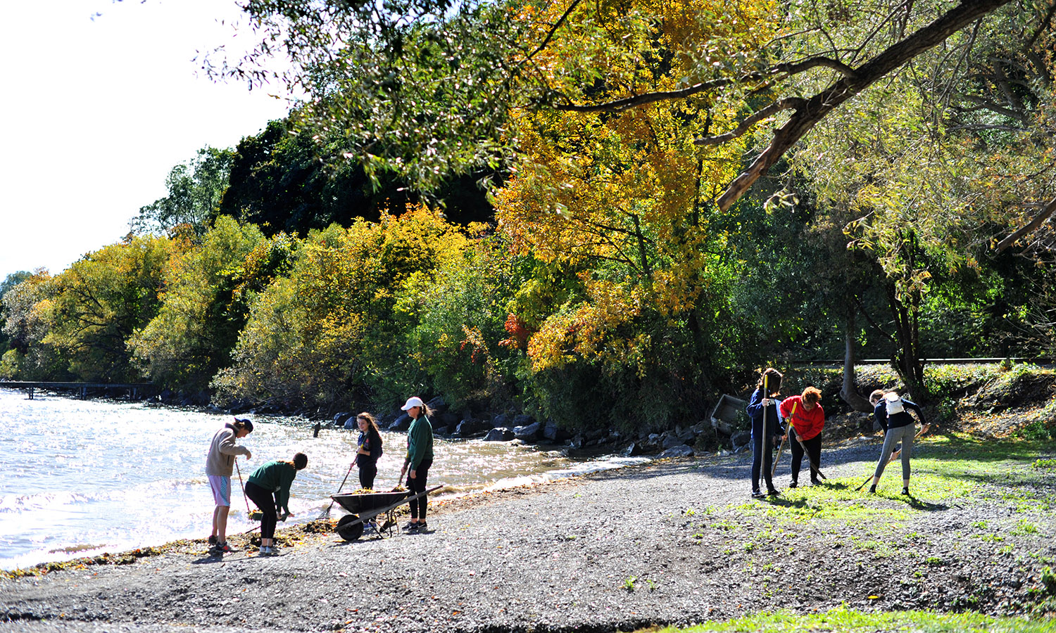 Students clear the banks of Seneca Lake during October Day of Serviceon on Saturday.