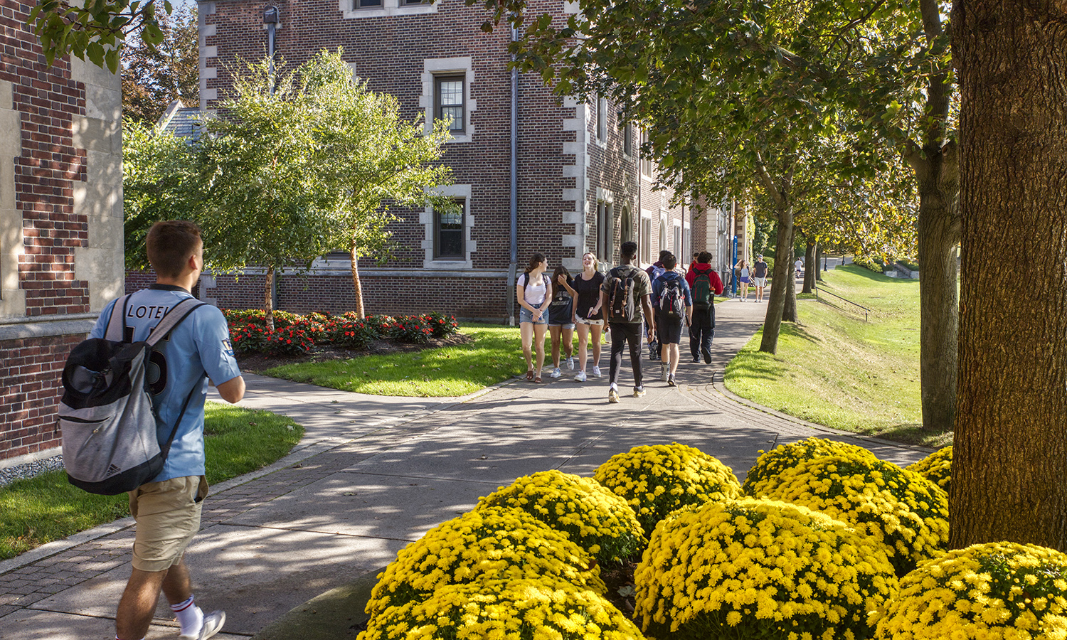 Students walk to class along the Quad.