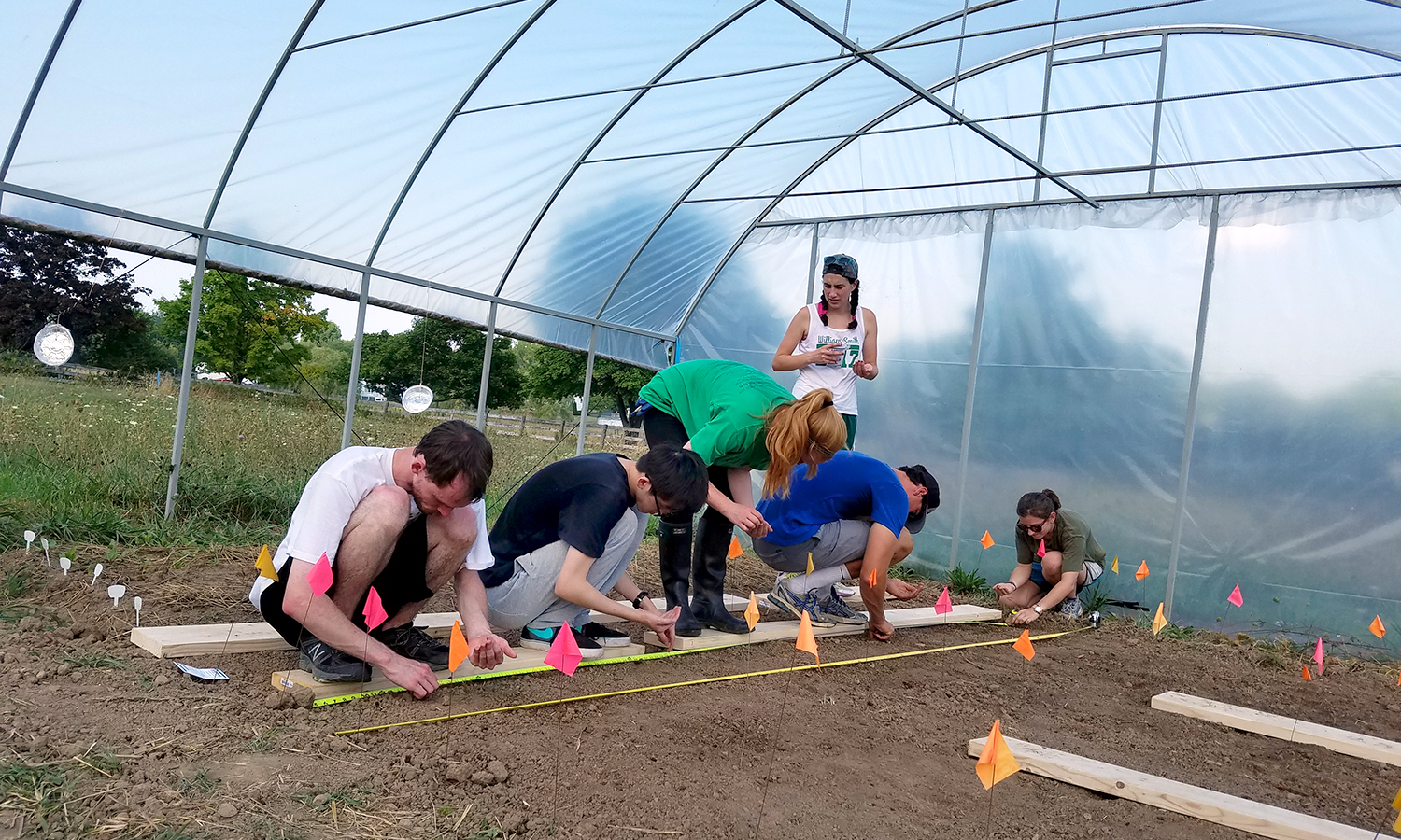 Attached is a photo of Environmental Studies seniors in my ENV400: Group SIE class planting seeds in the high tunnel at HWS Fricolin Farm. The food we are growing will be donated to the Geneva Community Lunch Program as part of the Greens Growing Project, a multi-year collaboration between the Environmental Studies Program, the Finger Lakes Institute Food Systems Program and the Lunch Program/Catholic Charities. Over the course of the past two years we have donated over 40 pounds of fresh produce and more than 300 volunteer hours. Pretty cool stuff, huh?!