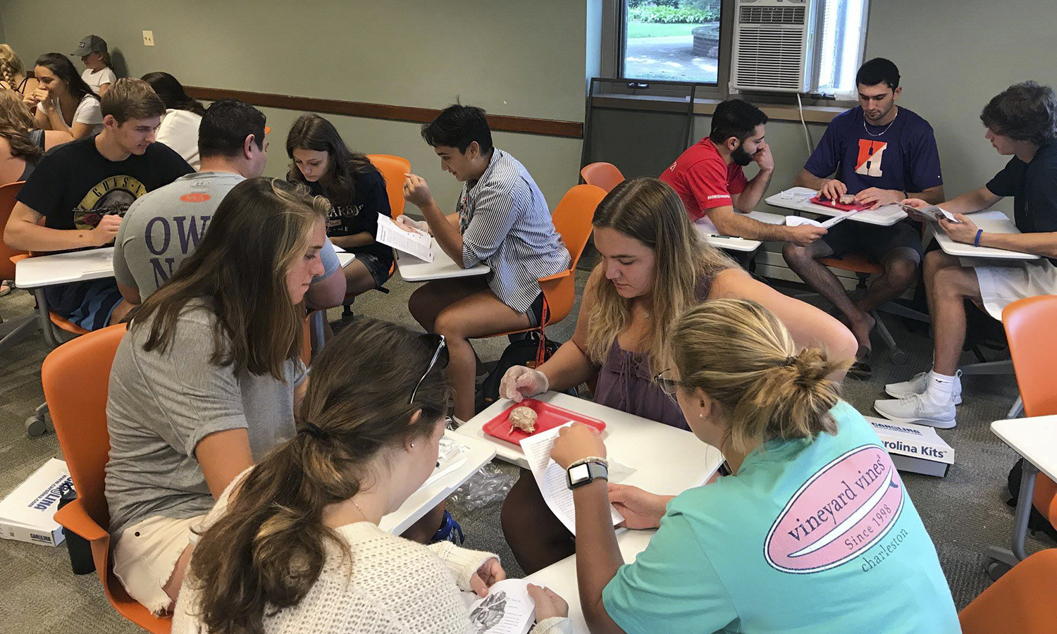 "Students in Assistant Professor of Psychology Brien Ashdown's ""Introduction to Psychology"" course gain hands-on experience with brain anatomy and function by dissecting the brains of sheep."
