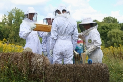 led by HWS Food Systems Program Manager Sarah Meyer (right), Students examine a frame of honeycomb at the HWS Fribolin Farm.