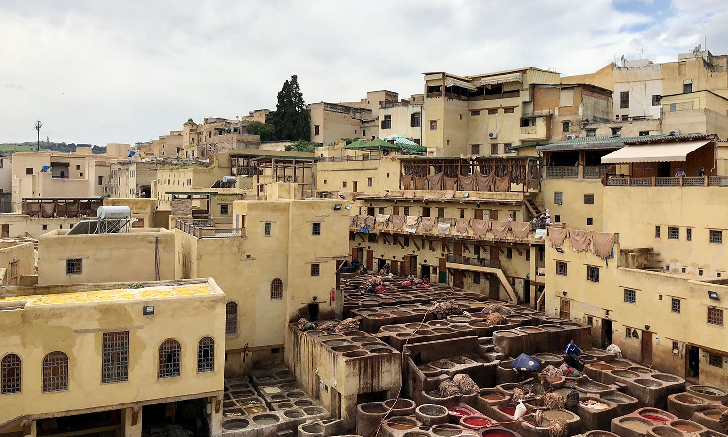 Arch.-3rd-place.-TIED.-Solomon.-39.-Arch_Fes,-Morocco.Chouara-tannery-in-Africa's-oldest-Medina