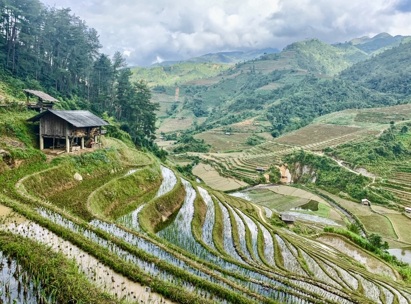 Landscape. 1st place. TIED. Ali Turner. 9.Landscape_Mu Cang Chai, Northern Vietnam_Afternoon hike along rice terraces in Mu Cang Chai, Vietnam.