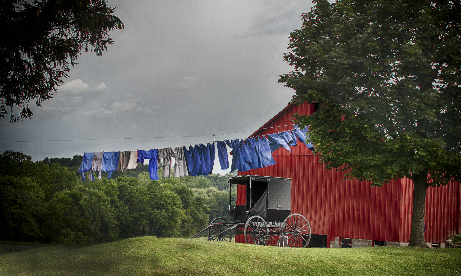 A clothesline blows in the wind on a farm in Lyons, N.Y.