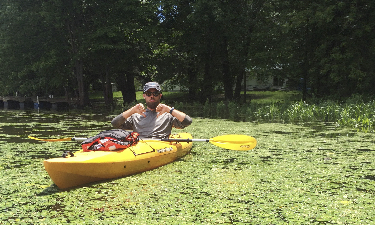 "As part of his invasive species focused research project at the Finger Lakes Institute, Colin Marker '18 gives ""Thumb down"" while surveying for Water Chestnut (T. natans) on the Seneca River."