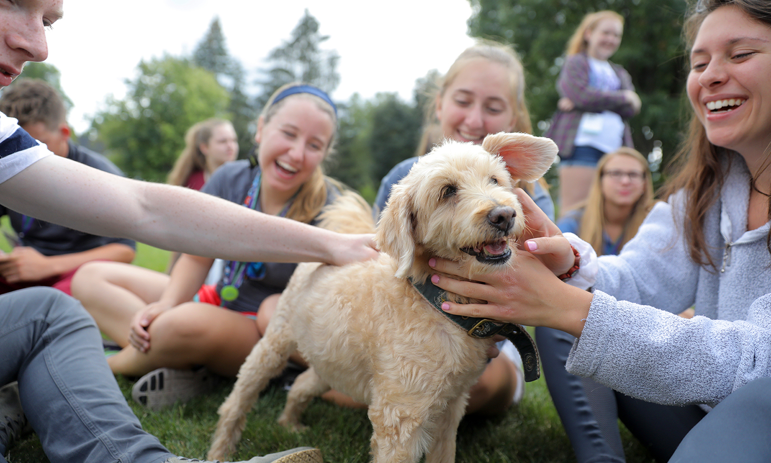 "As part of Orientation, members of the Classes of 2021 play with Barkley during ""Paws for a Break"" on Smith Lawn. Barkley is just one of several dogs that professors and staff keep with them on campus."
