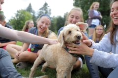 """As part of Orientation, members of the Classes of 2021 play with Barkley during """"Paws for a Break"""" on Smith Lawn. Barkley is just one of several dogs that professors and staff keep with them on campus."""