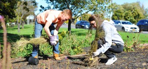 Day of Service 10-15-16
