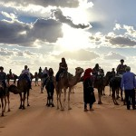 Carly Kelly, WS '20 riding a camel with her program in the Sahara desert in Morocco.