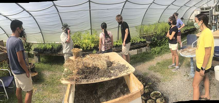 EcoReps tour Butterfly Effect's greenhouses. The Geneva business sells native plants.